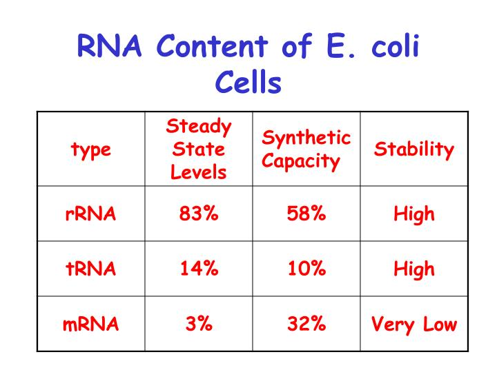 RNA Content of E. coli Cells