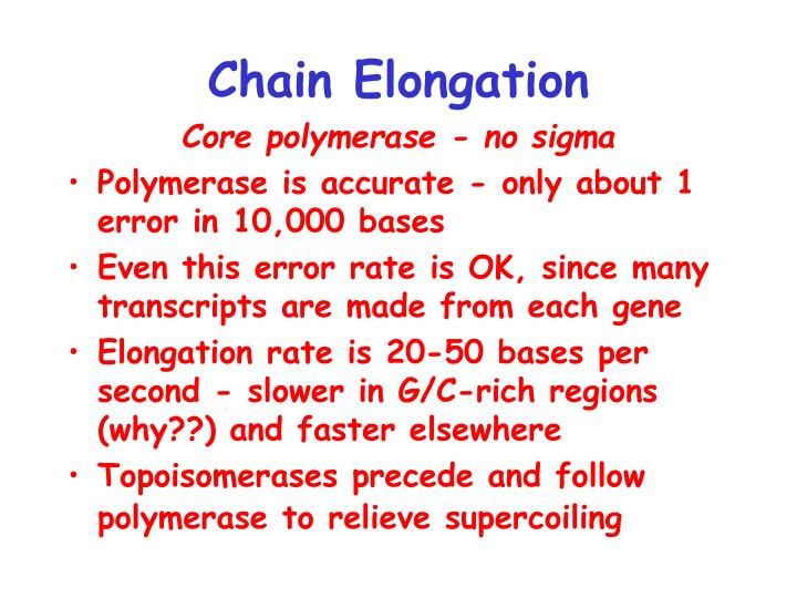 Chain Elongation