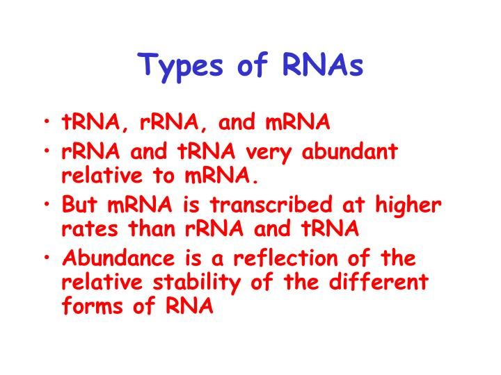 Types of RNAs