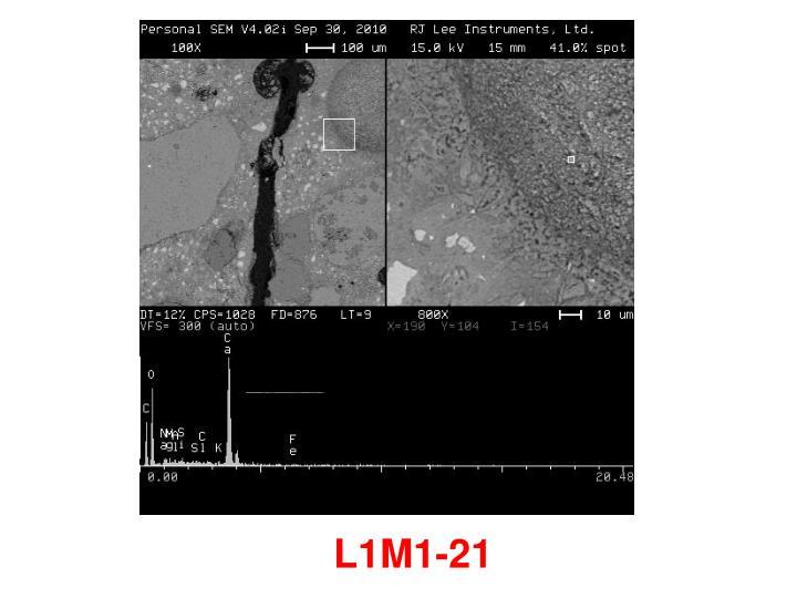 L1M1-21