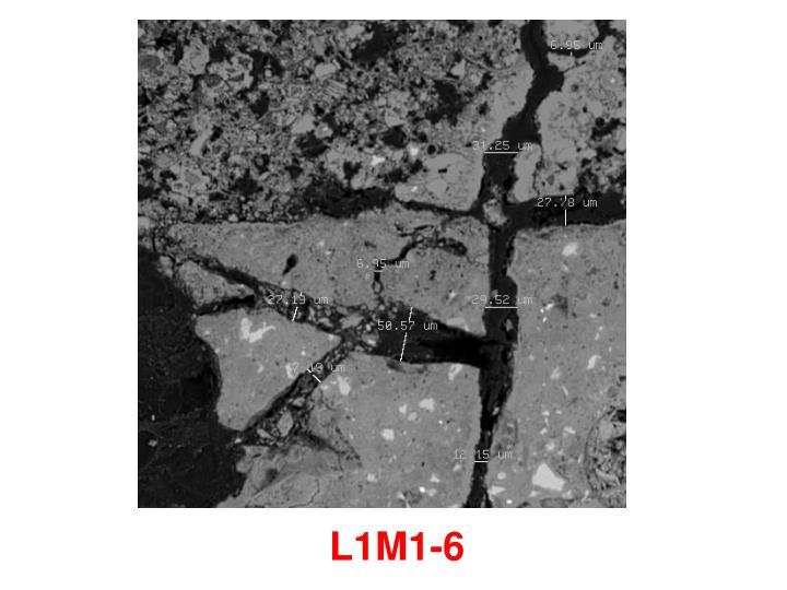 L1M1-6