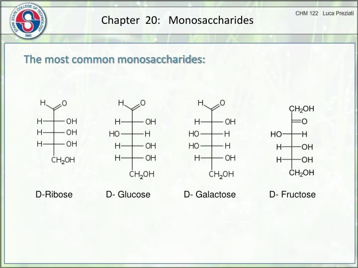 Chapter  20:   Monosaccharides