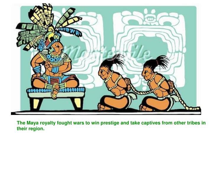 The Maya royalty fought wars to win prestige and take captives from other tribes in their region.