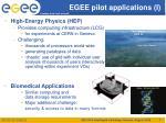 egee pilot applications i