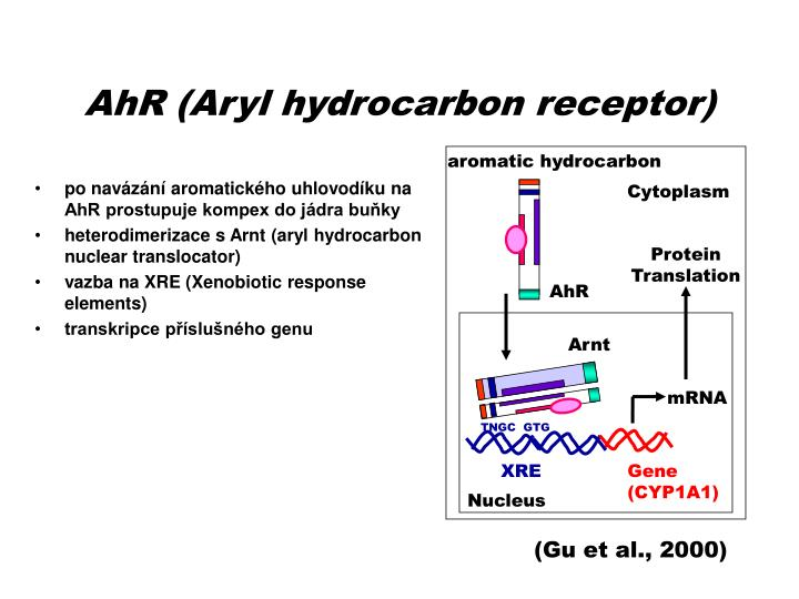 aromatic hydrocarbon