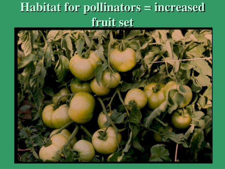 Habitat for pollinators = increased fruit set