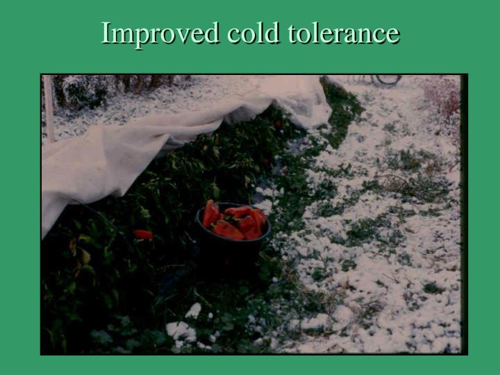 Improved cold tolerance