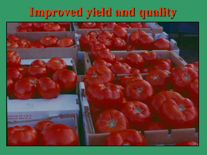 Improved yield and quality