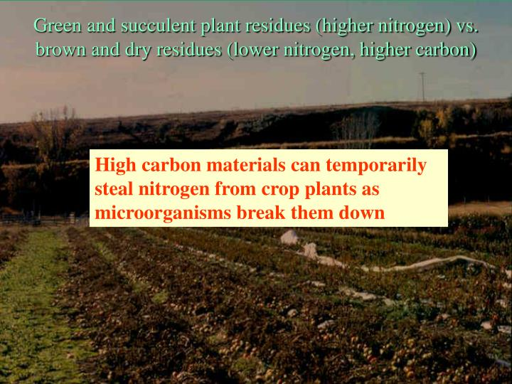 Green and succulent plant residues (higher nitrogen) vs.
