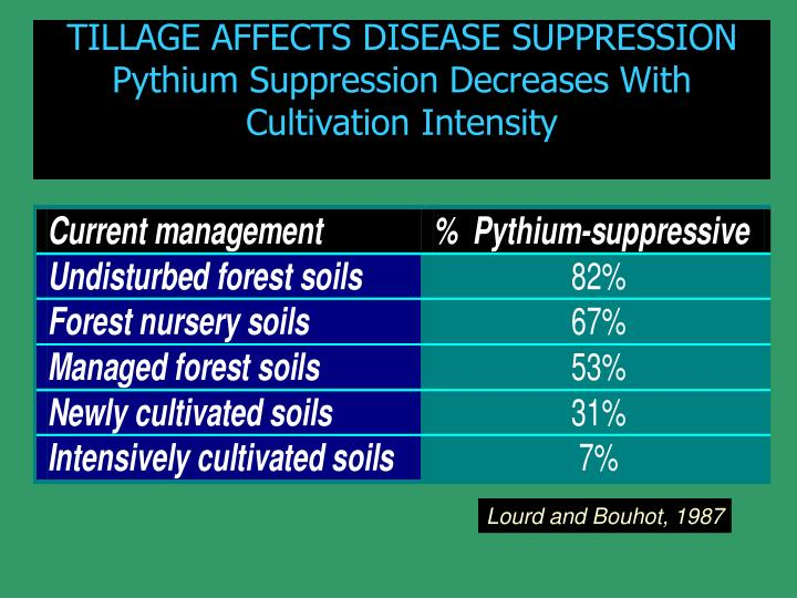 TILLAGE AFFECTS DISEASE SUPPRESSION