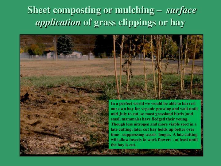 Sheet composting or mulching –