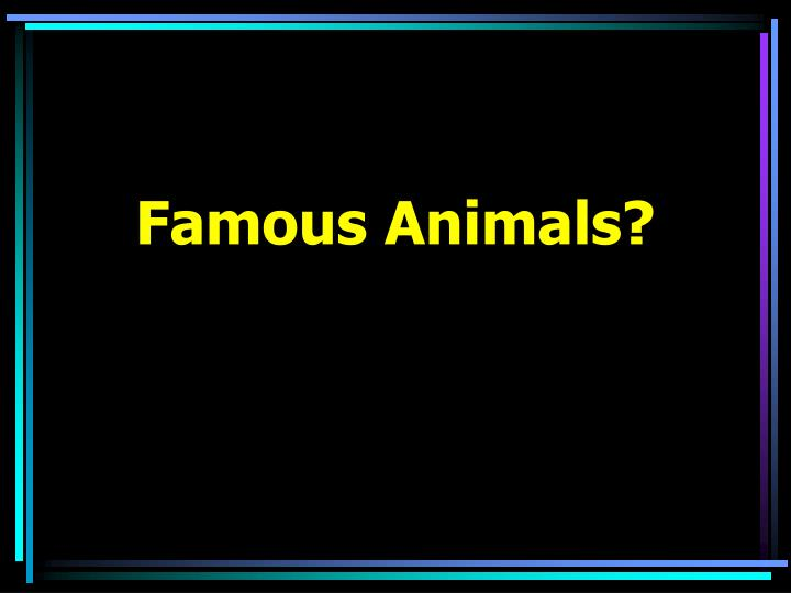 Famous Animals?
