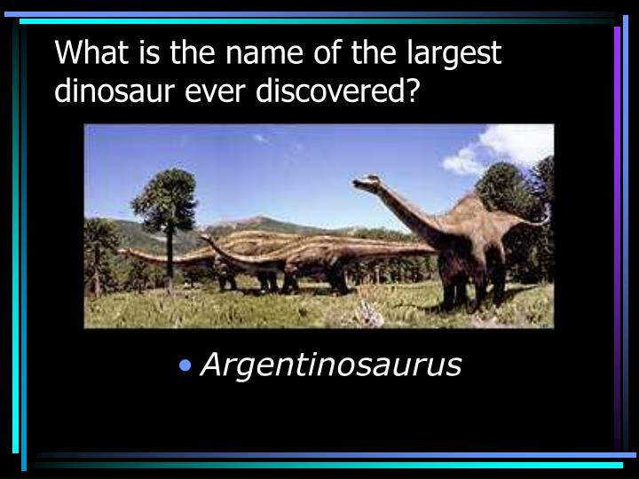 What is the name of the largest dinosaur ever discovered?