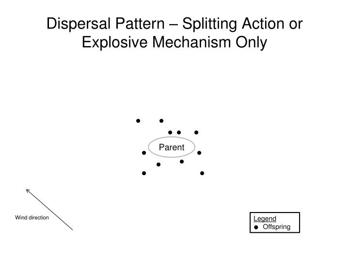 Dispersal Pattern – Splitting Action or Explosive Mechanism Only