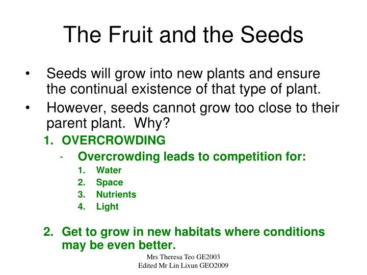 The Fruit and the Seeds