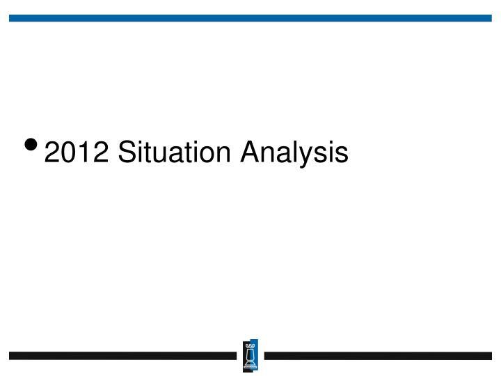 2012 Situation Analysis