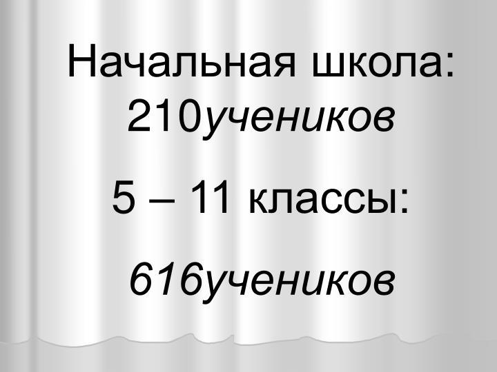 Начальная школа: 210