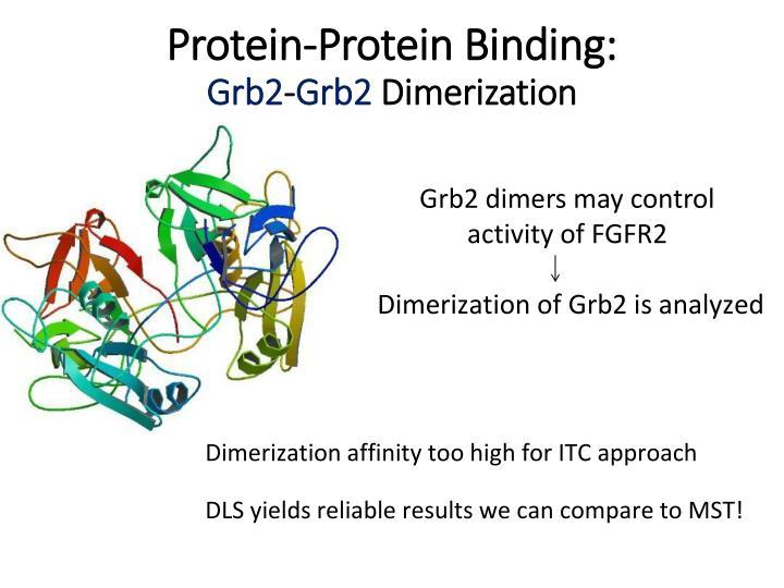 Protein-Protein B