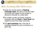 risk exchange rate risk cont