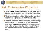risk exchange rate risk cont1