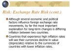 risk exchange rate risk cont2