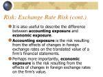 risk exchange rate risk cont3