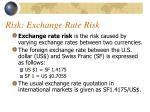 risk exchange rate risk