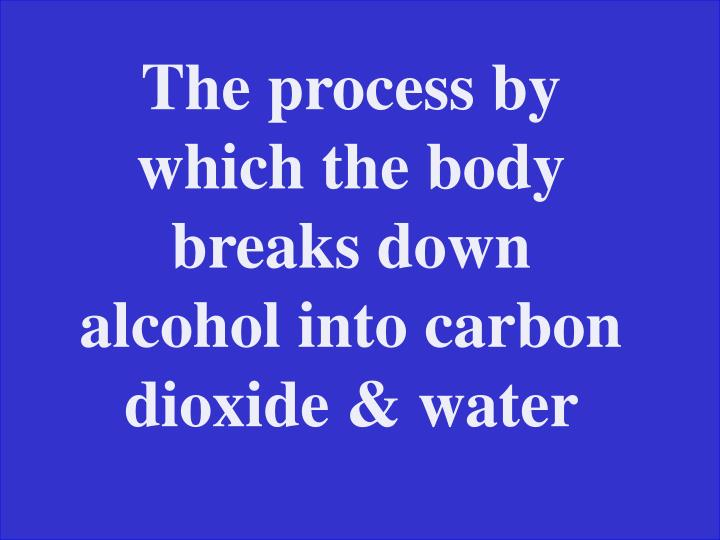 The process by which the body breaks down alcohol into carbon dioxide & water