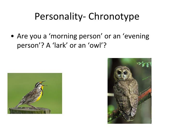 Personality- Chronotype