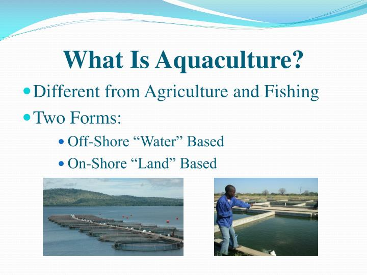 What is aquaculture