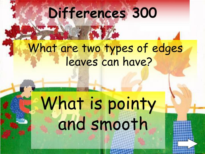 Differences 300