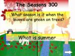 the seasons 300