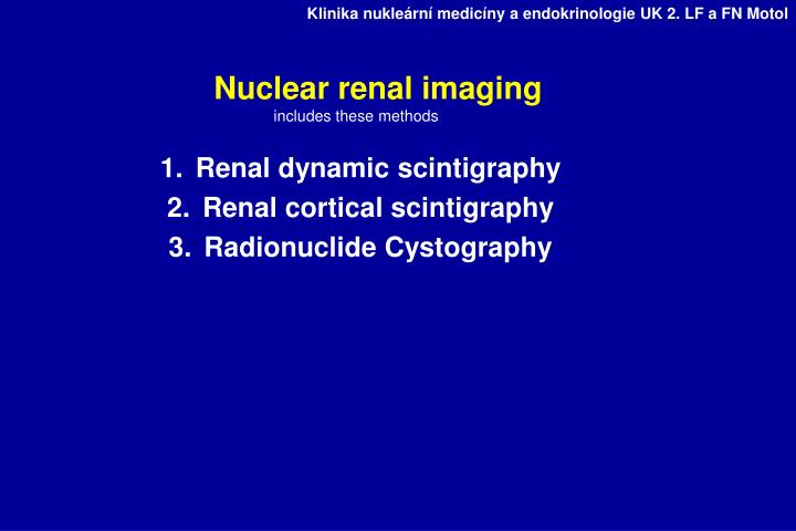 Nuclear renal imaging