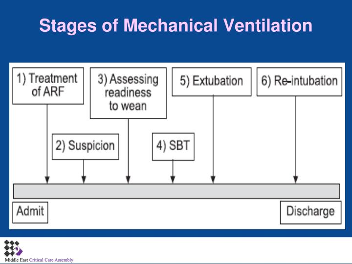 Stages of mechanical ventilation