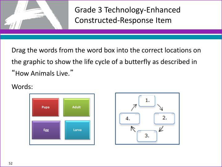 Grade 3 Technology-Enhanced Constructed-Response Item