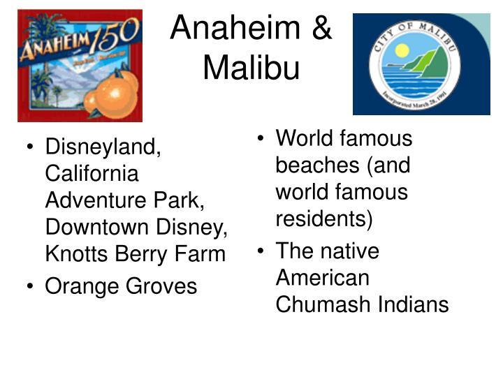 Disneyland, California Adventure Park, Downtown Disney, Knotts Berry Farm