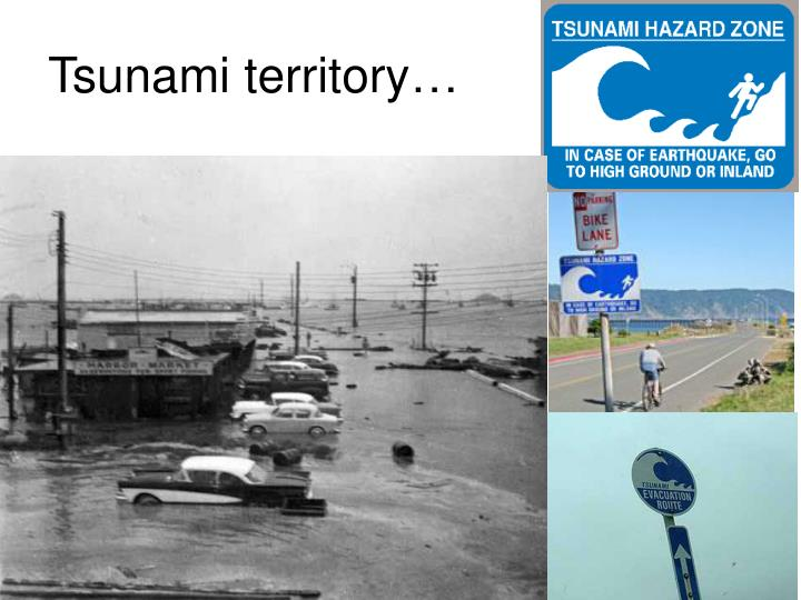 Tsunami territory…