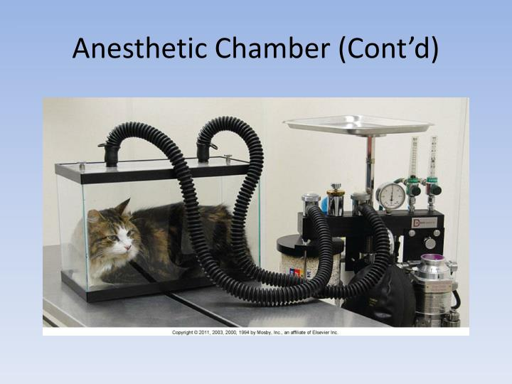 Anesthetic Chamber (Cont'd)