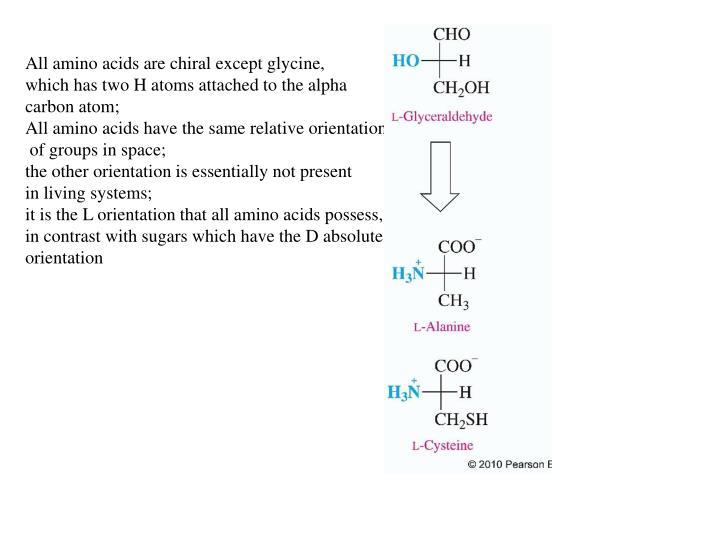 All amino acids are chiral except glycine,