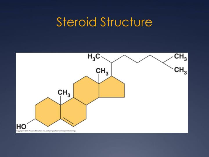 steroid structure