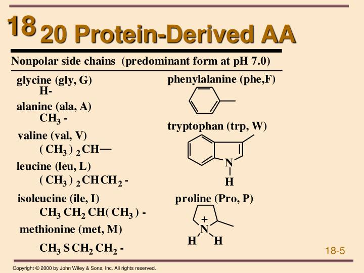 20 Protein-Derived AA