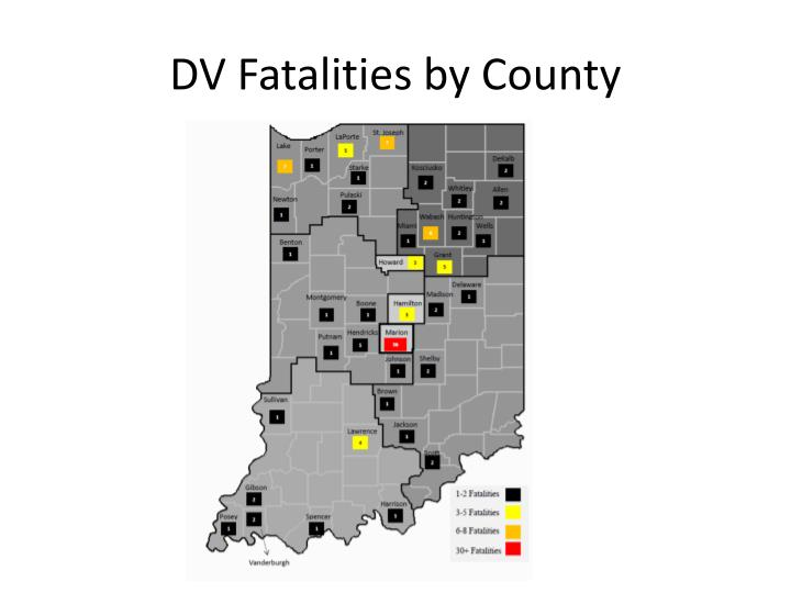 DV Fatalities by County