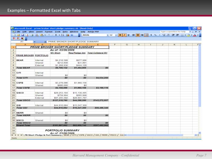 Examples – Formatted Excel with Tabs