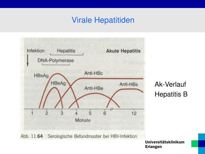 Virale Hepatitiden
