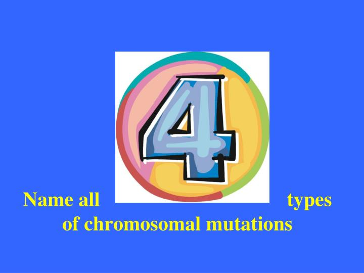Name all                                     types of chromosomal mutations