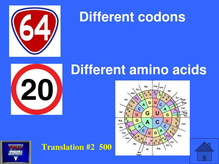 Different codons