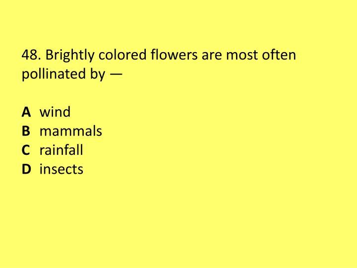 48. Brightly