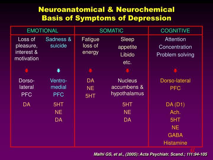 Neuroanatomical & Neurochemical