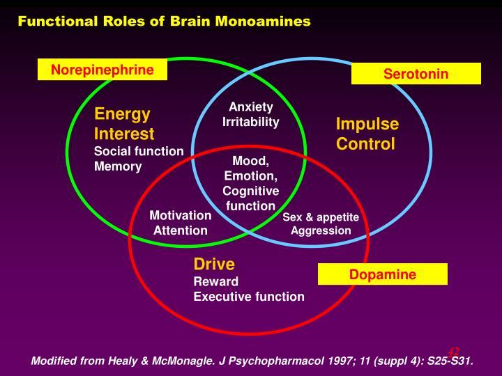 Functional Roles of Brain Monoamines