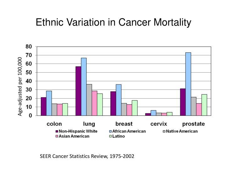 Ethnic Variation in Cancer Mortality